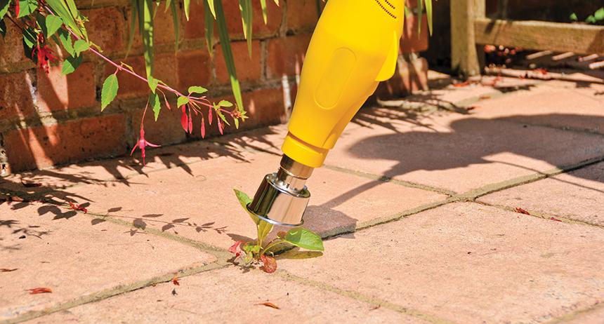 Les 6 Meilleurs Désherbeurs Electriques - Contrôle Efficace Des Mauvaises Herbes