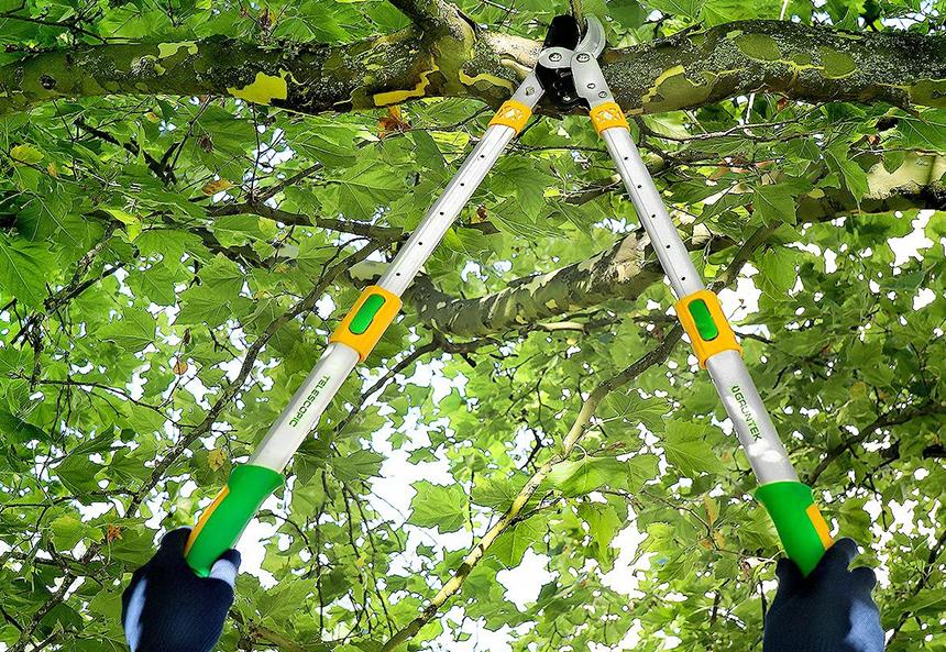 Les 5 Meilleures Coupe-Branches Télescopiques - Commande Dans Le Jardin Sans Effort!