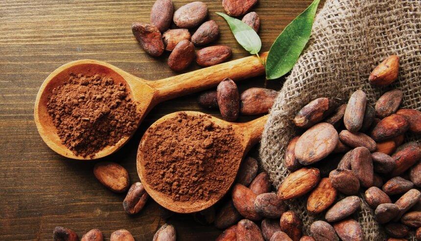 Les 5 Meilleurs Chocolats En Poudre: Préparation du Cacao Chaud Délicieux